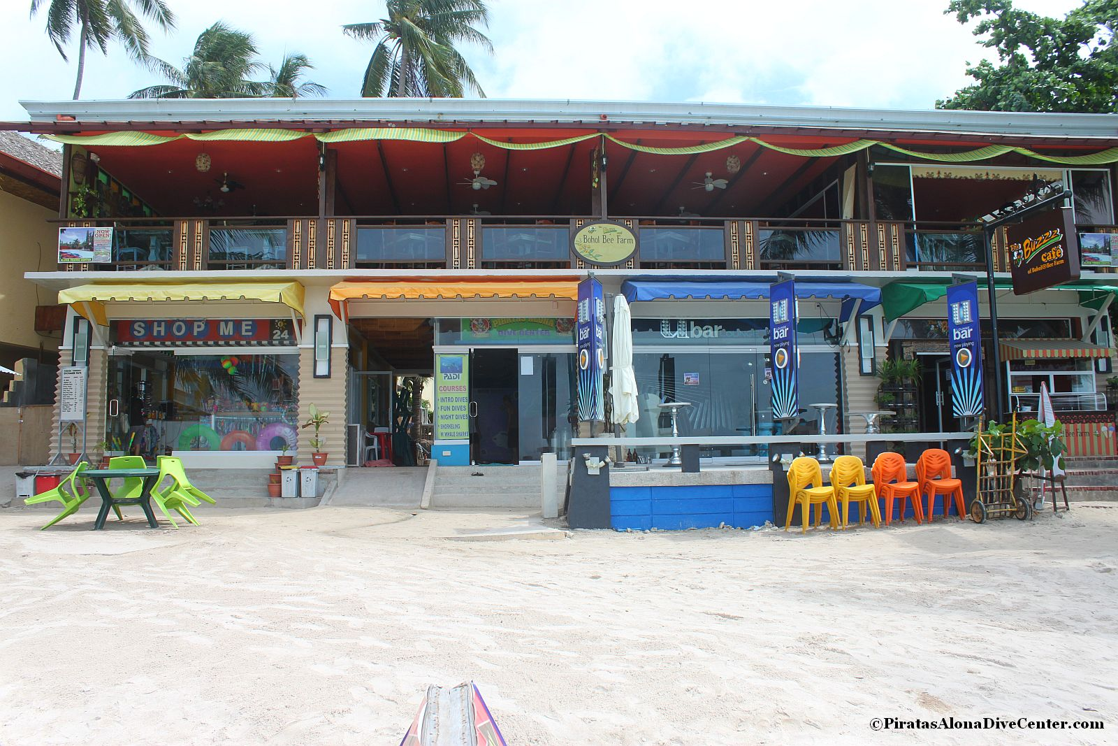 Scuba diving in bohol padi courses by piratas alona dive for Dive centres